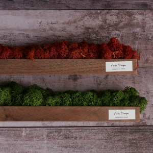 [Alvin Design] MOSS TABLE STICK