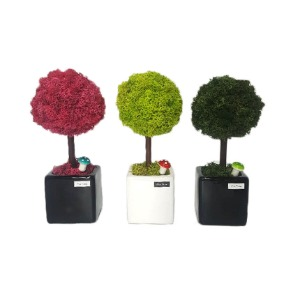 [Alvin Design] MOSS BALL TREE