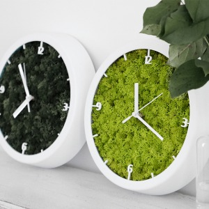 [Alvin Design] MOSS WALL CLOCK